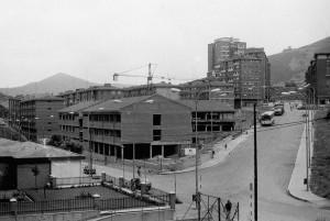 San Adrian Institutua - Historia