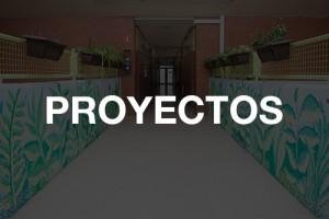 San Adrian Institutua - Proyectos